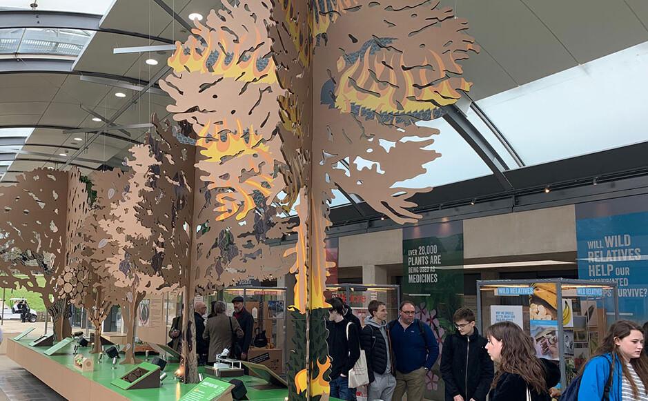 Kew Gardens' Millennium Seed Bank Exhibition
