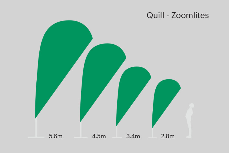Zoom Lite quill sizes